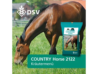 COUNTRY Horse 2122-0